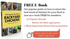 Free Chicken Selection Guide